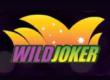 Online Casino Australia - Wild Joker